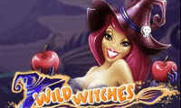 Играть в аппарат Wild Witches